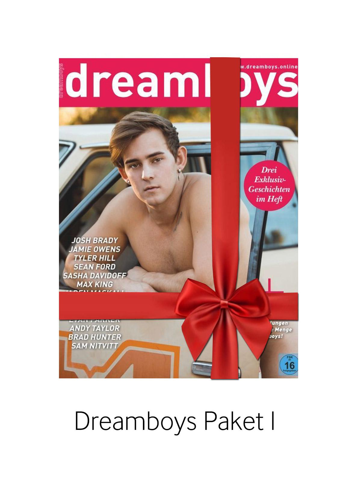 Dreamboys Paket I - Hefte 226 - 229, 238, 239