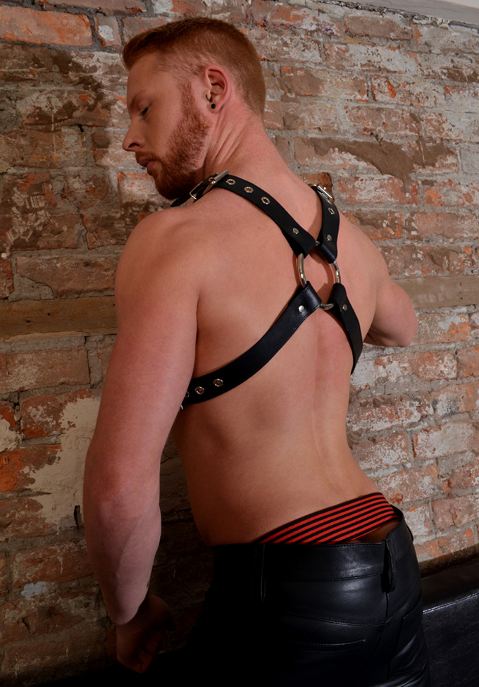 Rouge Chest Harness