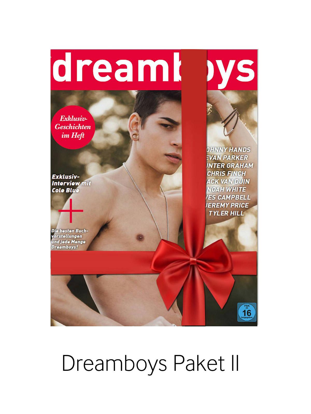 Dreamboys Paket II - Hefte 232 - 237
