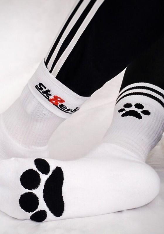Sk8erboy Puppy Socks | White