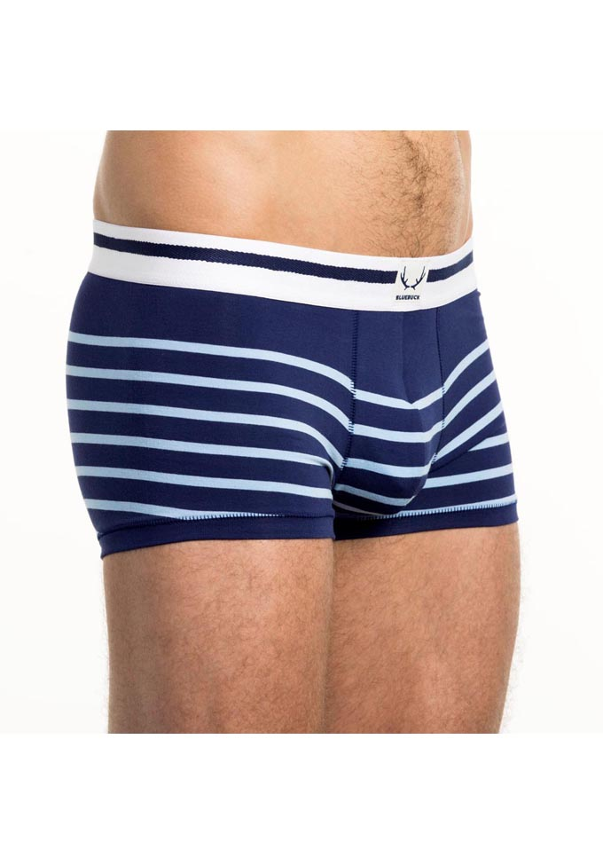 Bluebuck Nautical Stripes Trunk