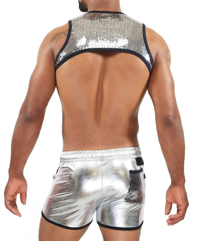 TOF H0016A Broadway Harness Silver