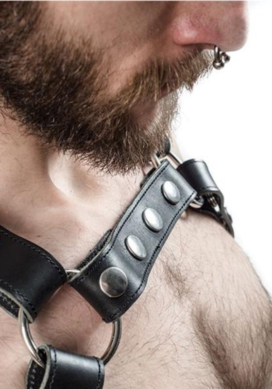 Mr. B Leder X-Back Harness