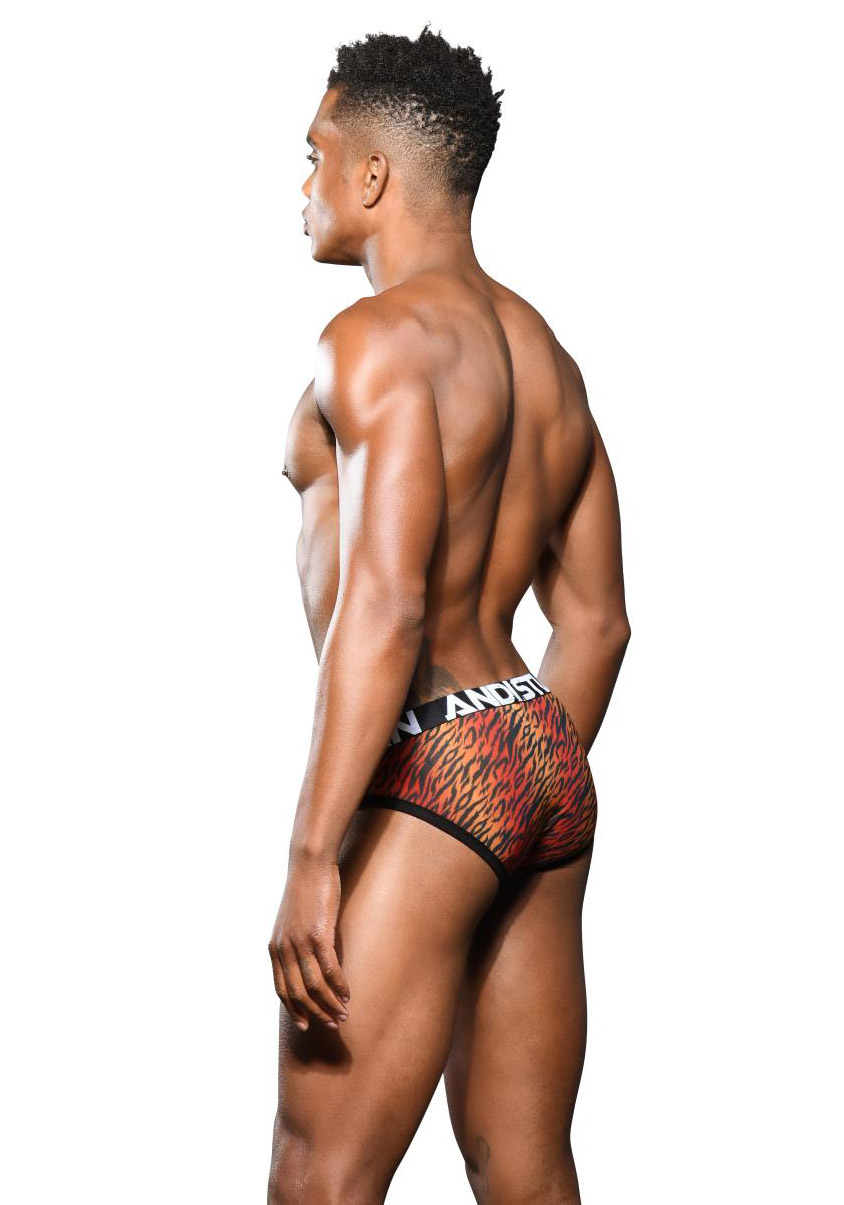 Andrew Christian Sheer Tiger Brief Almost Naked
