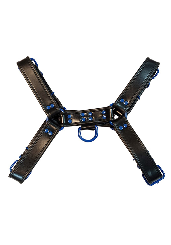 Rouge H-Front Harness Black/Blue