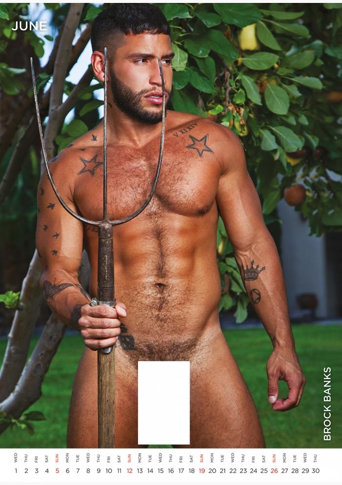 The Men of Naked Sword Kalender 2022