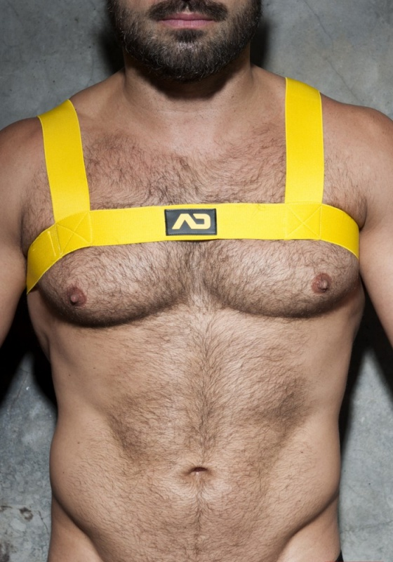 Addicted F104 Basic Elastic Harness