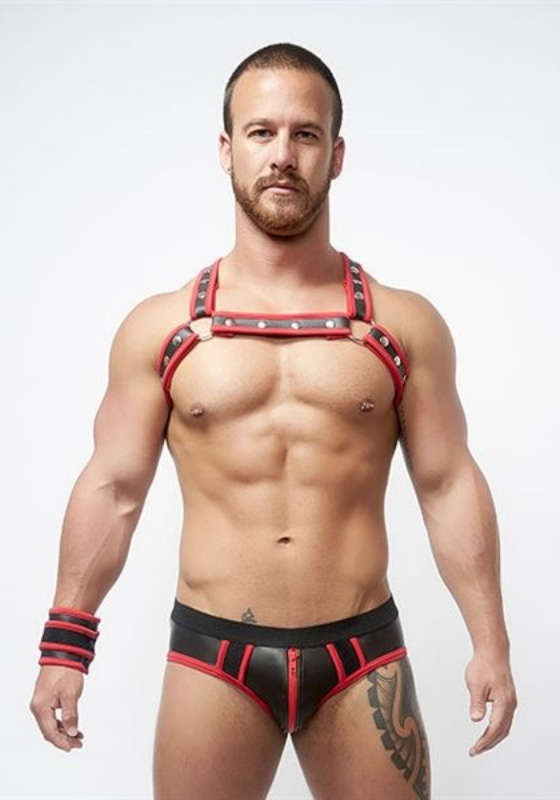 Mr. B: Neoprene X Back Harness