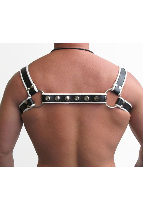 Mr. B: Leder Halter Harness