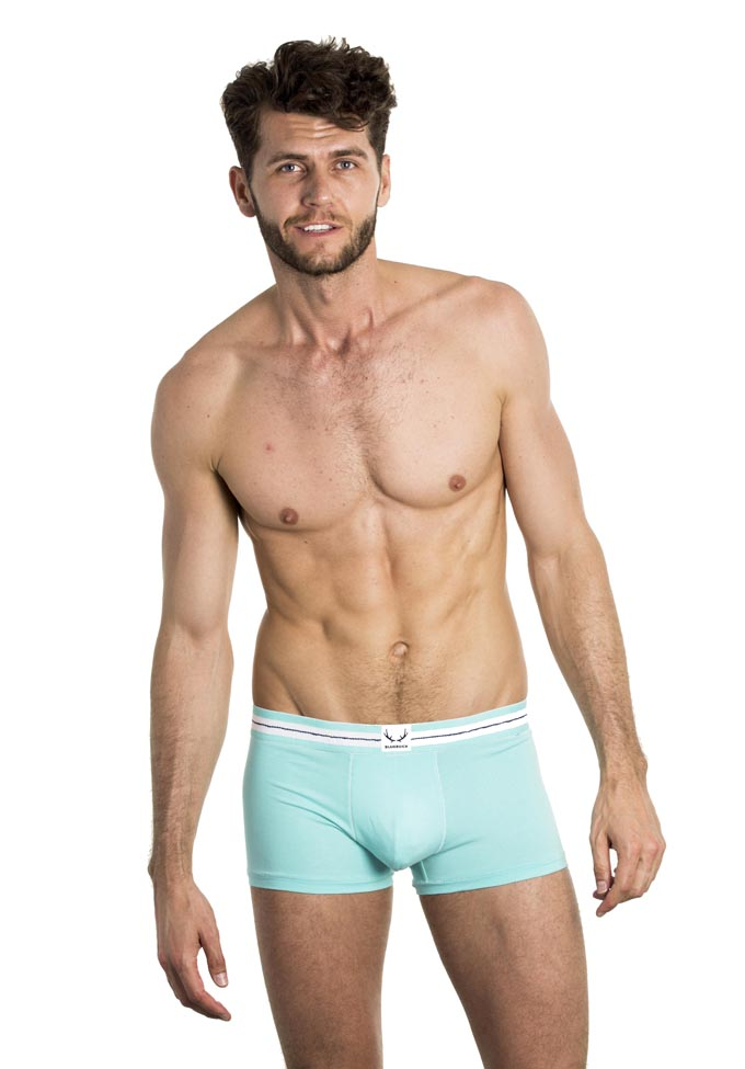 Bluebuck Turquoise Trunk