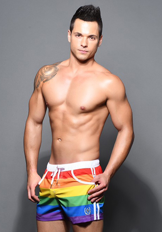 Andrew Christian Pride Stripe Laurel Swim Shorts