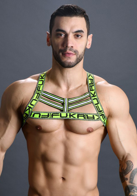 Andrew Christian FUKR Dimension Harness